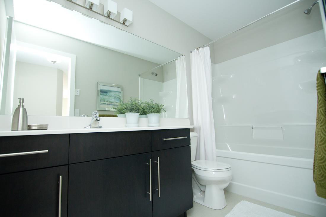 Contemporary Main Bathroom with Dark Wood Vanity and Light Walls